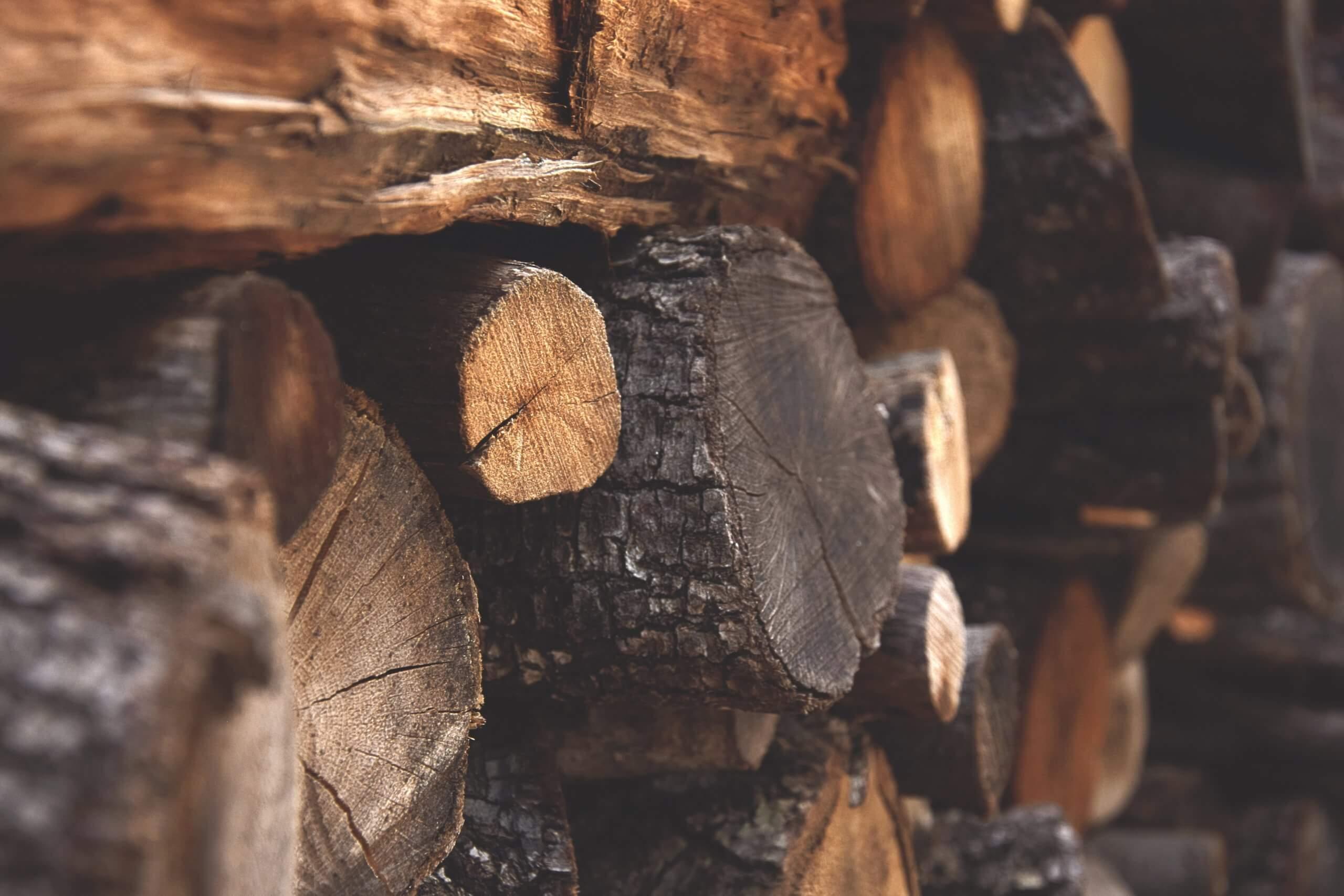 wood displaying biomass